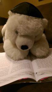 Bear Mitzvah